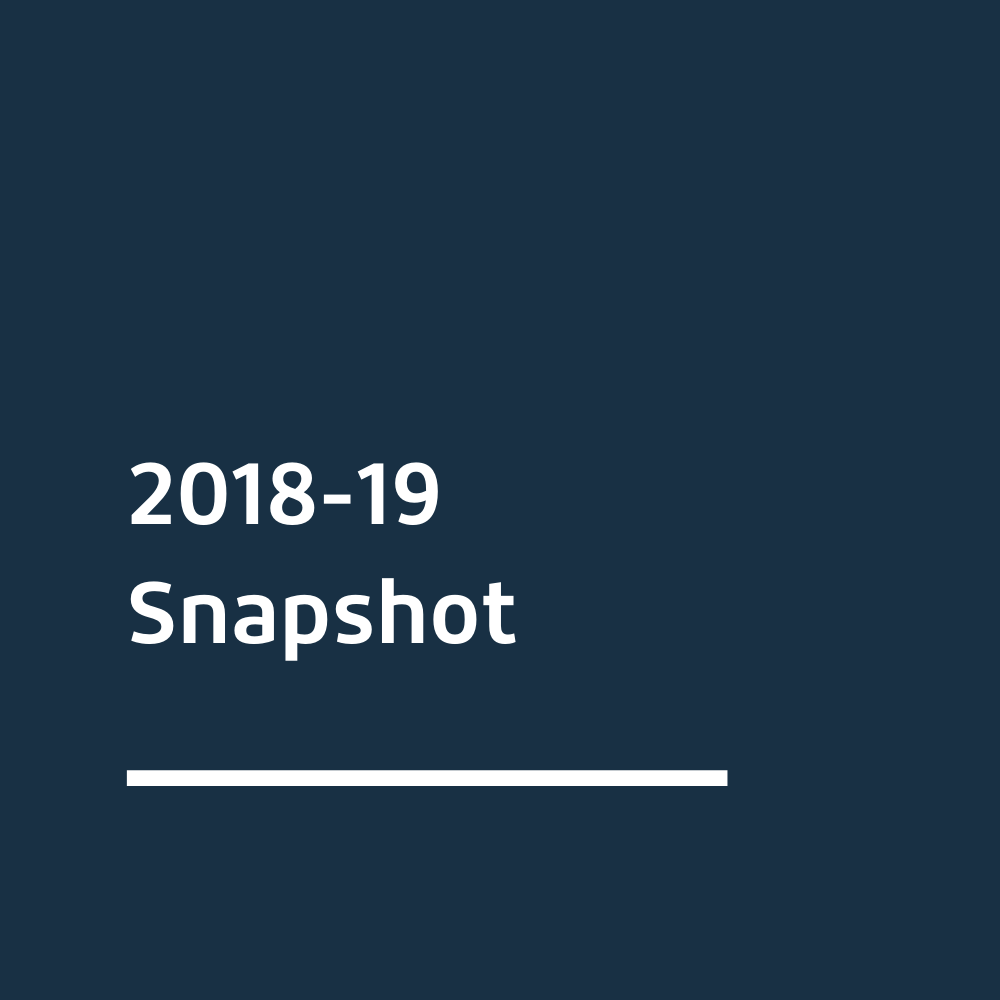 2019 Snapshot related link